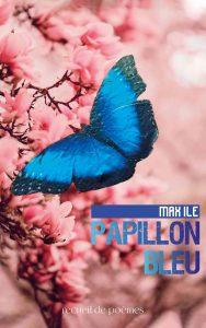 Max Ile - Papillon bleu